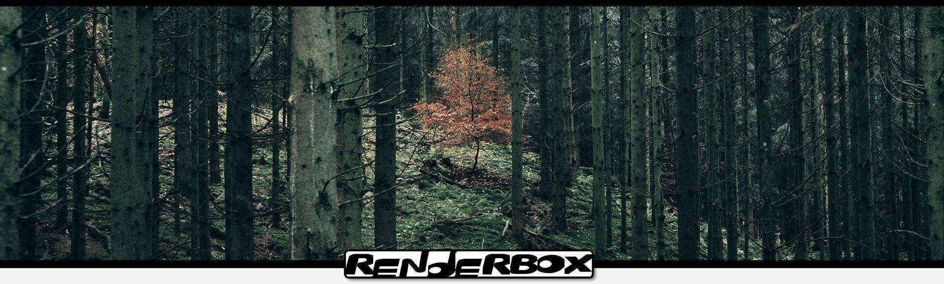 Renderbox